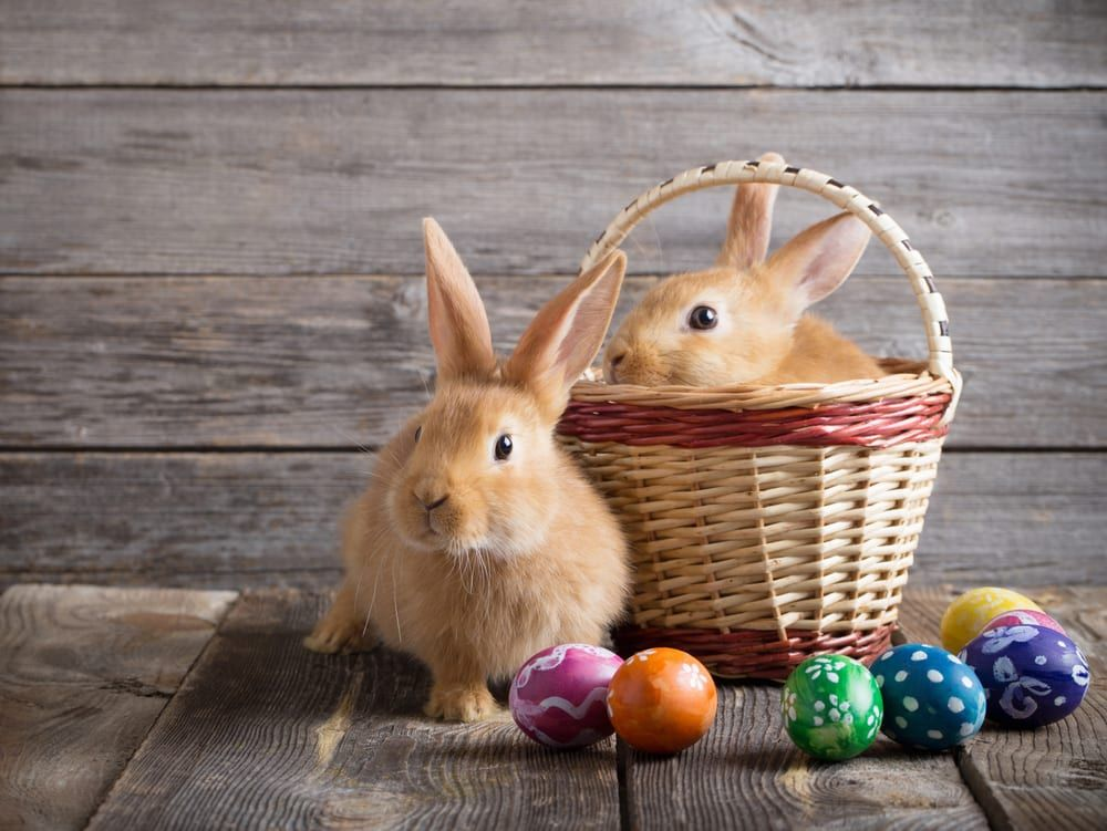 Here Are The Easter Bank Holiday Dates For 2021 And When
