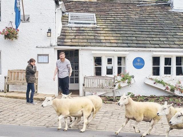 Picture: BBC/Lookout Point/Stuart Wood