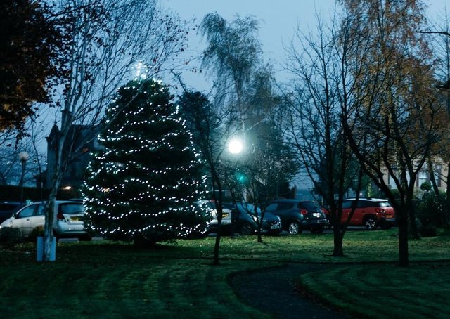 Overgate's Light Up A Life Tree